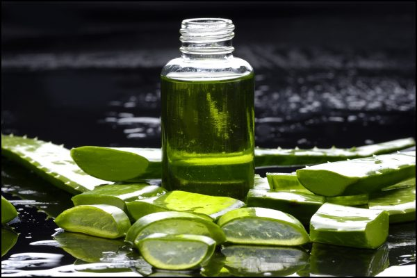europeanpharmacyonline Fun-Facts-of-Aloe-Vera-2